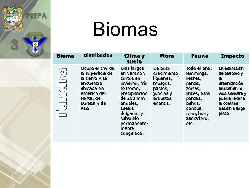 BIOMAS Se clasifican en Biomas: Terrestres y Acuáticos Terrestres: Tundra, Taiga, Desierto, Chaparral, Sabana, Bosques, Selva, Pradera Acuáticos: Aguas Dulces Aguas Saladas