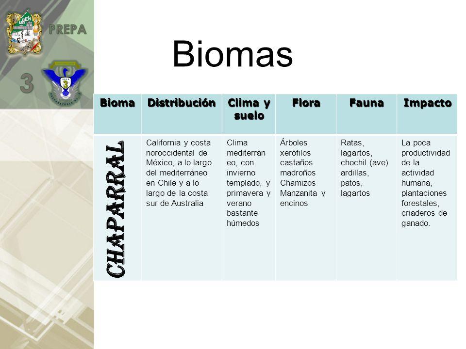 BiomasBioma Distribuci ón Clima y suelo FloraFaunaImpacto Los desiertos cubren un tercio de la superficie de la tierra y se encuentran principalment e ubicados en el norte y suroeste de África; parte del oriente y centro de Asia; Australia, suroeste de E.U.; el norte de México.