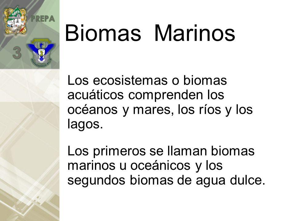 BIOMA DE AGUAS MARINAS Al conjunto de ecosistemas acuáticos se les denomina HIDROSFERA BIOMA DE AGUAS CONTINENTALES
