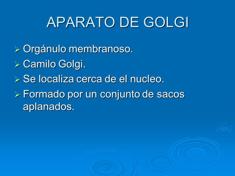 APARATO DE GOLGI Orgánulo membranoso. Orgánulo membranoso. Camilo Golgi. Camilo Golgi. Se localiza cerca de el nucleo. Se localiza cerca de el nucleo.