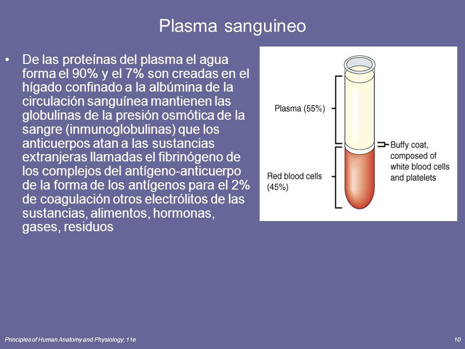 Principles of Human Anatomy and Physiology, 11e10 Plasma sanguineo De las proteínas del plasma el agua forma el 90% y el 7% son creadas en el hígado c