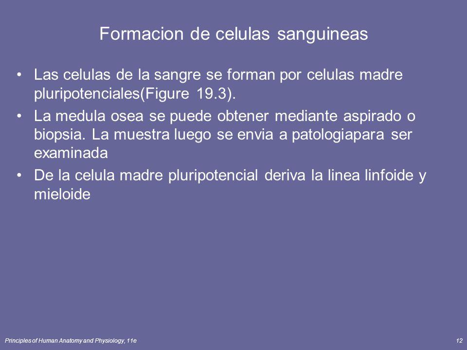 Principles of Human Anatomy and Physiology, 11e12 Formacion de celulas sanguineas Las celulas de la sangre se forman por celulas madre pluripotenciale