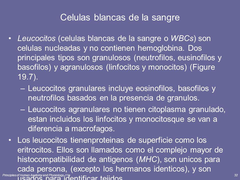 Principles of Human Anatomy and Physiology, 11e32 Celulas blancas de la sangre Leucocitos (celulas blancas de la sangre o WBCs) son celulas nucleadas