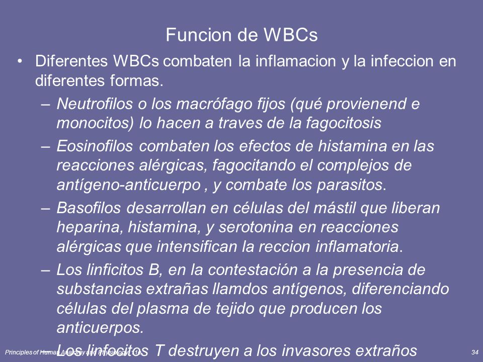Principles of Human Anatomy and Physiology, 11e34 Funcion de WBCs Diferentes WBCs combaten la inflamacion y la infeccion en diferentes formas. –Neutro