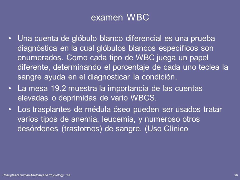 Principles of Human Anatomy and Physiology, 11e36 examen WBC Una cuenta de glóbulo blanco diferencial es una prueba diagnóstica en la cual glóbulos bl