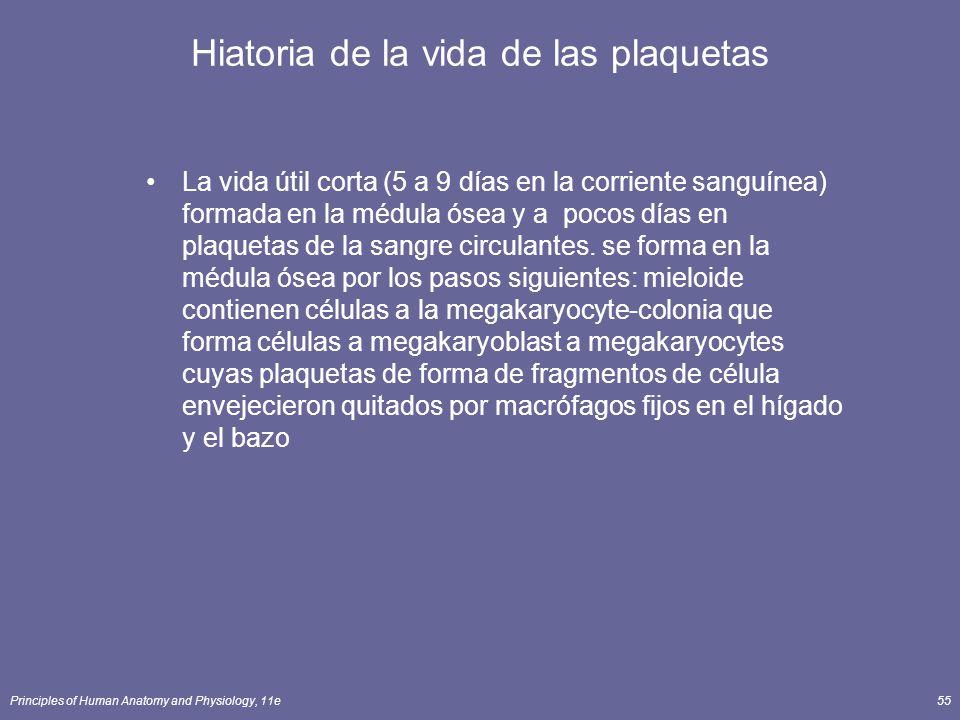 Principles of Human Anatomy and Physiology, 11e55 Hiatoria de la vida de las plaquetas La vida útil corta (5 a 9 días en la corriente sanguínea) forma