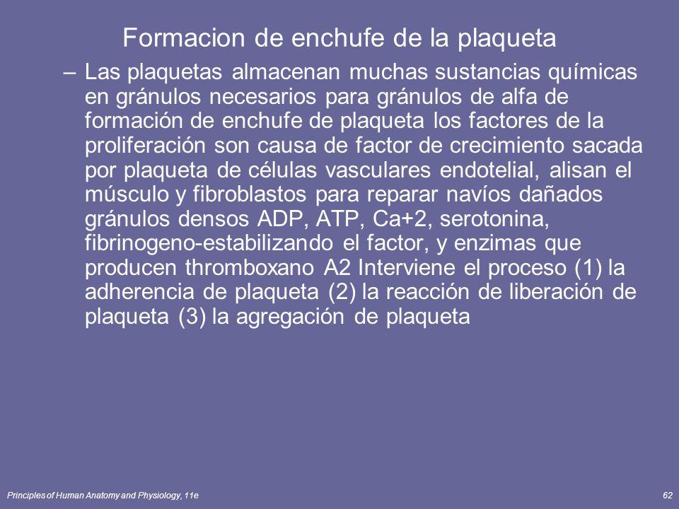 Principles of Human Anatomy and Physiology, 11e62 Formacion de enchufe de la plaqueta –Las plaquetas almacenan muchas sustancias químicas en gránulos
