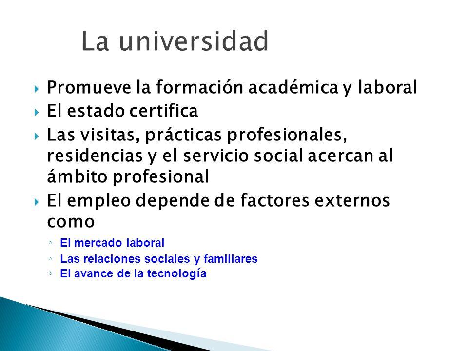 Promueve la formación académica y laboral El estado certifica Las visitas, prácticas profesionales, residencias y el servicio social acercan al ámbito