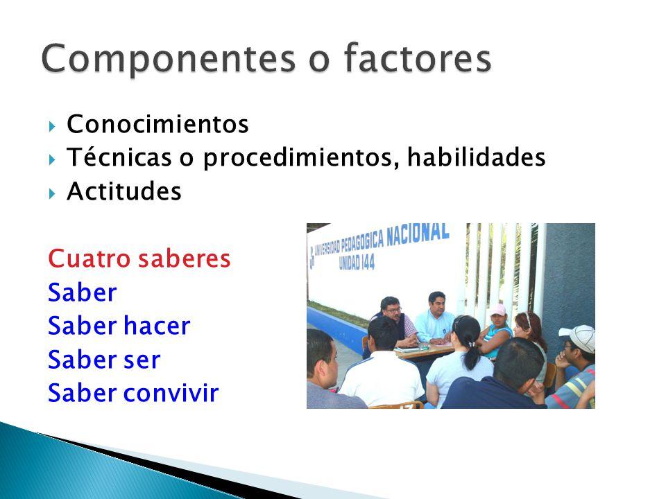 La clasificación de competencias es variada: Las llaman genéricas, específicas, particulares, otros las designan como transversales, disciplinarias, sistémicas, interpersonales e instrumentales, etc.