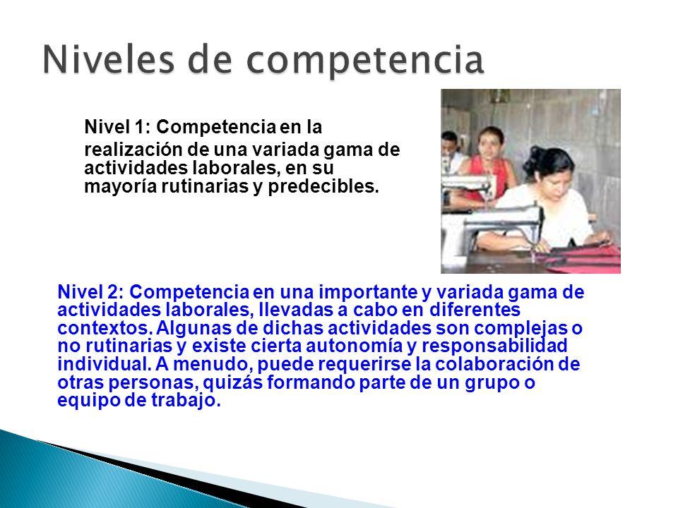 Nivel 1: Competencia en la realización de una variada gama de actividades laborales, en su mayoría rutinarias y predecibles. Nivel 2: Competencia en u