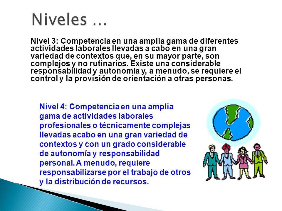 Nivel 3: Competencia en una amplia gama de diferentes actividades laborales llevadas a cabo en una gran variedad de contextos que, en su mayor parte,