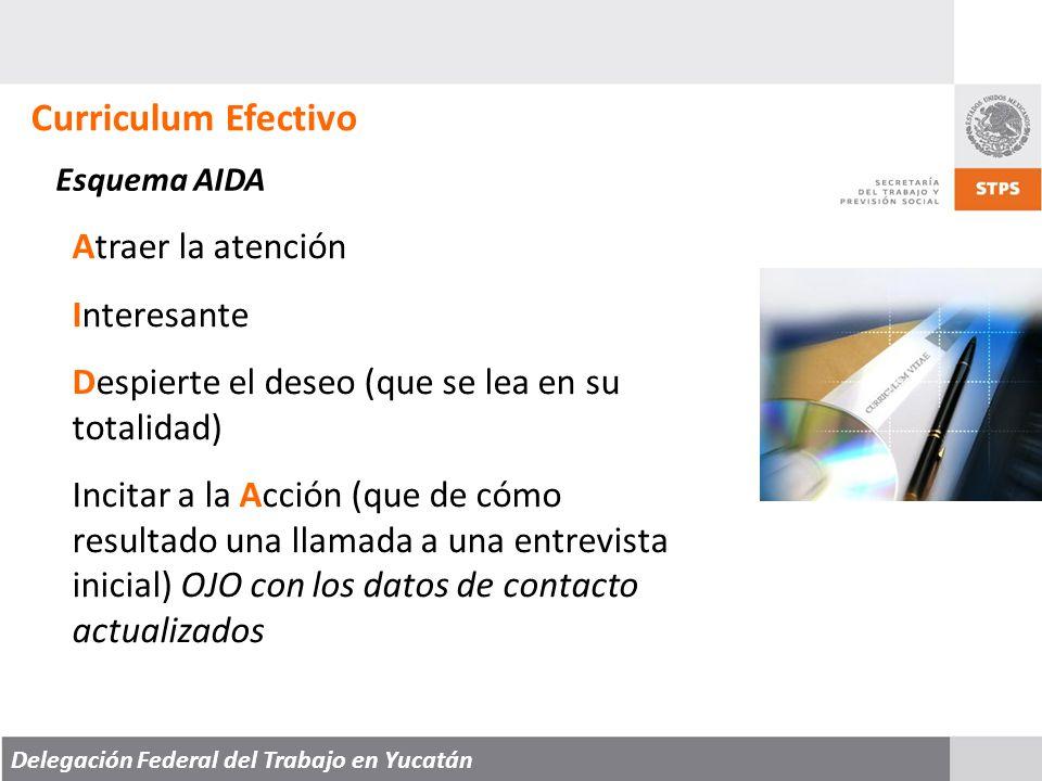 Delegación Federal del Trabajo en Yucatán Curriculum Efectivo Esquema AIDA Atraer la atención Interesante Despierte el deseo (que se lea en su totalidad) Incitar a la Acción (que de cómo resultado una llamada a una entrevista inicial) OJO con los datos de contacto actualizados