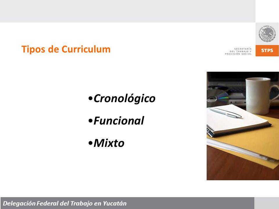 Delegación Federal del Trabajo en Yucatán Tipos de Curriculum Cronológico Funcional Mixto