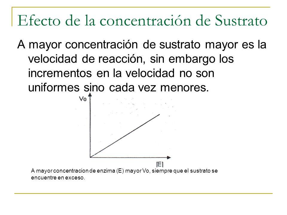 Efecto de la concentración de Sustrato A mayor concentración de sustrato mayor es la velocidad de reacción, sin embargo los incrementos en la velocida