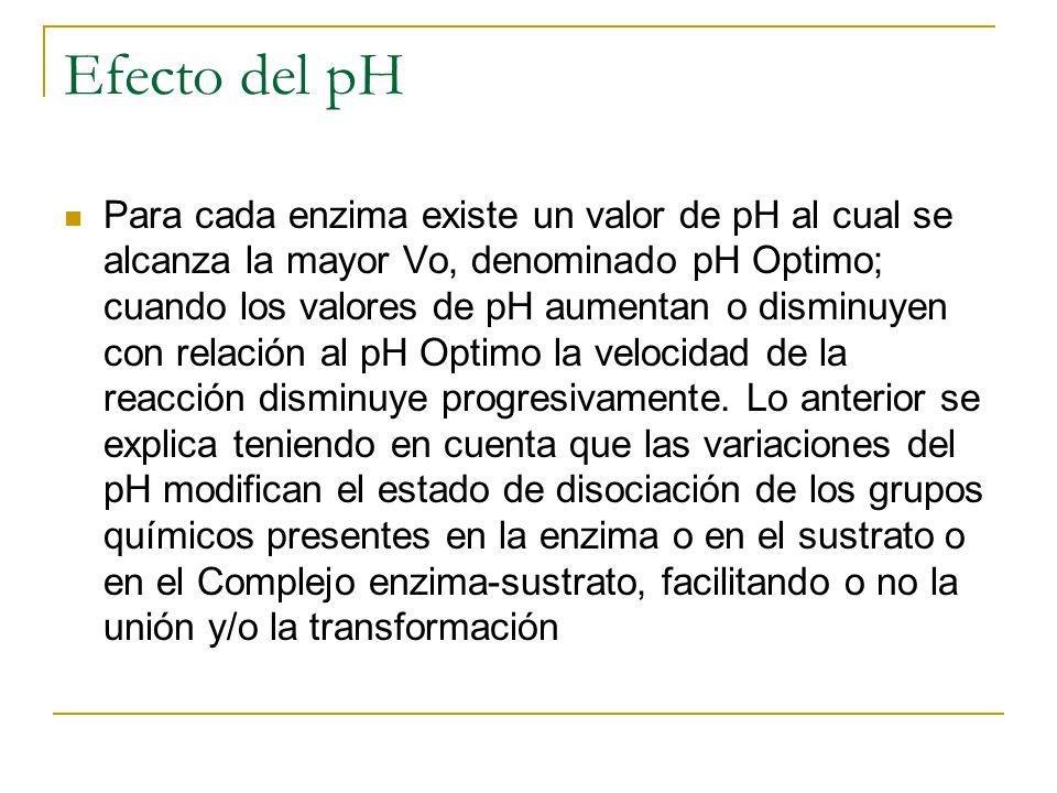 Efecto del pH Para cada enzima existe un valor de pH al cual se alcanza la mayor Vo, denominado pH Optimo; cuando los valores de pH aumentan o disminu