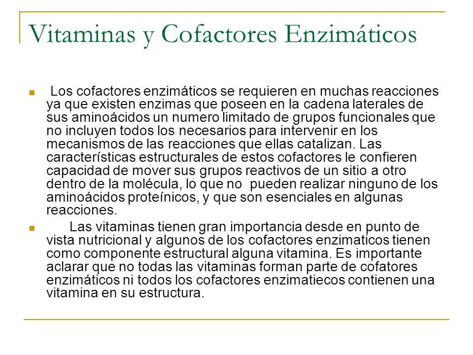 Vitaminas y Cofactores Enzimáticos Los cofactores enzimáticos se requieren en muchas reacciones ya que existen enzimas que poseen en la cadena lateral