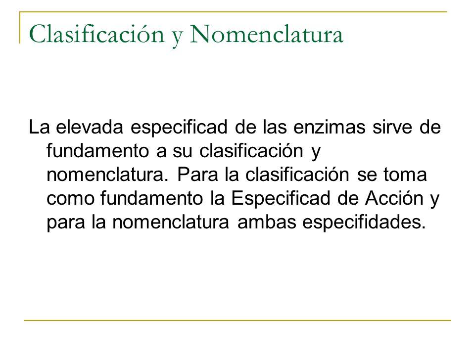 Clasificación y Nomenclatura La elevada especificad de las enzimas sirve de fundamento a su clasificación y nomenclatura. Para la clasificación se tom