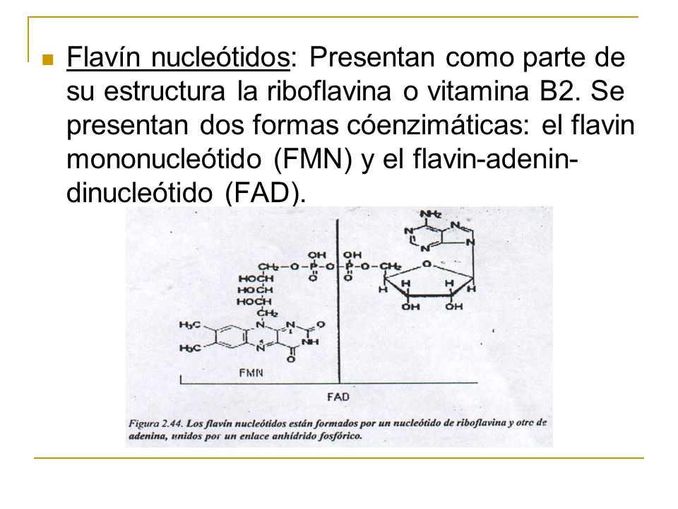 Flavín nucleótidos: Presentan como parte de su estructura la riboflavina o vitamina B2. Se presentan dos formas cóenzimáticas: el flavin mononucleótid
