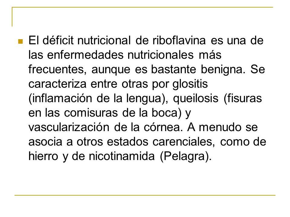 El déficit nutricional de riboflavina es una de las enfermedades nutricionales más frecuentes, aunque es bastante benigna. Se caracteriza entre otras