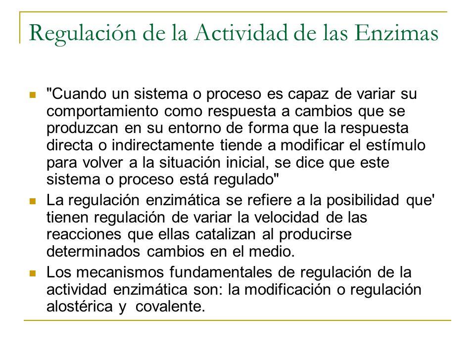 Regulación de la Actividad de las Enzimas