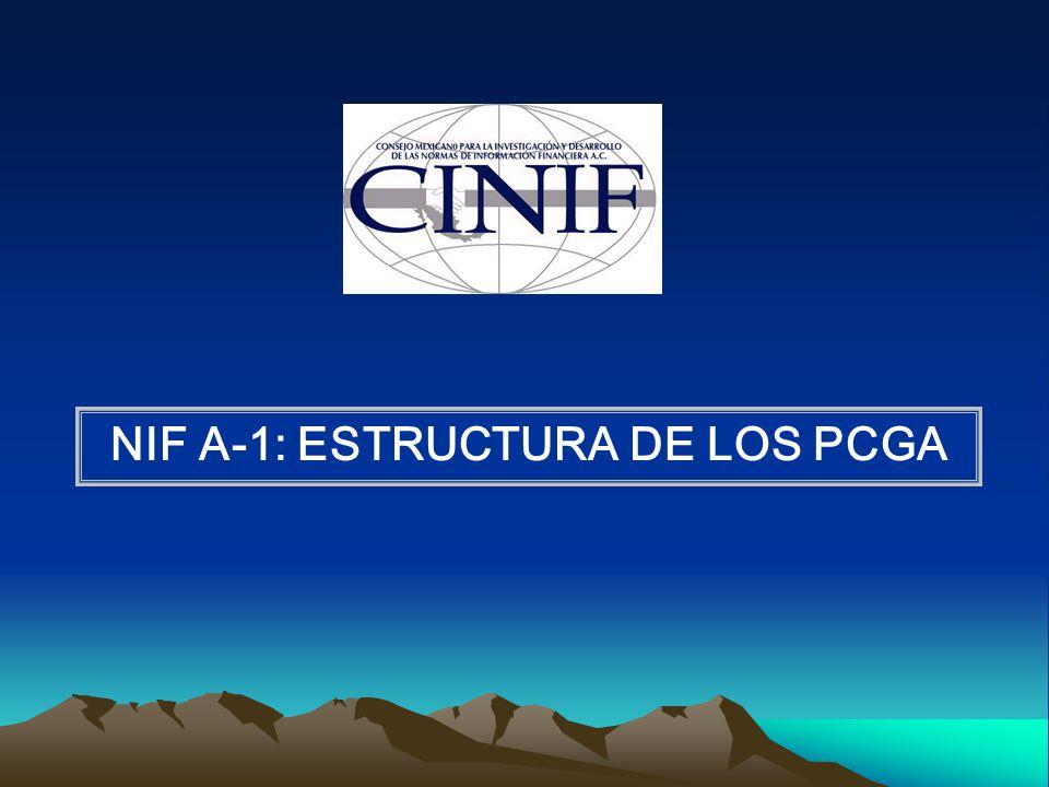 NIF A-1: ESTRUCTURA DE LOS PCGA