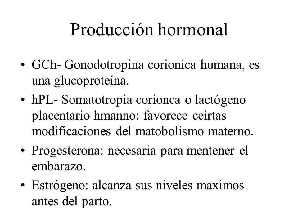 Producción hormonal GCh- Gonodotropina corionica humana, es una glucoproteína. hPL- Somatotropia corionca o lactógeno placentario hmanno: favorece cei