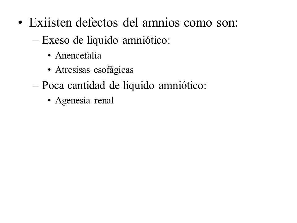 Exiisten defectos del amnios como son: –Exeso de liquido amniótico: Anencefalia Atresisas esofágicas –Poca cantidad de liquido amniótico: Agenesia ren