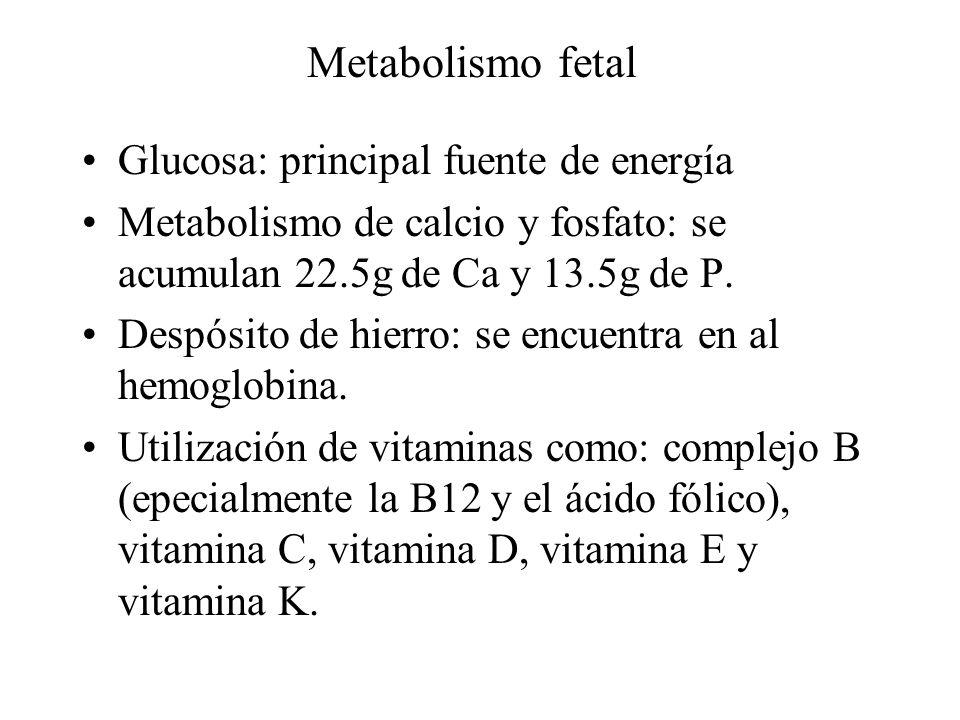 Metabolismo fetal Glucosa: principal fuente de energía Metabolismo de calcio y fosfato: se acumulan 22.5g de Ca y 13.5g de P. Despósito de hierro: se
