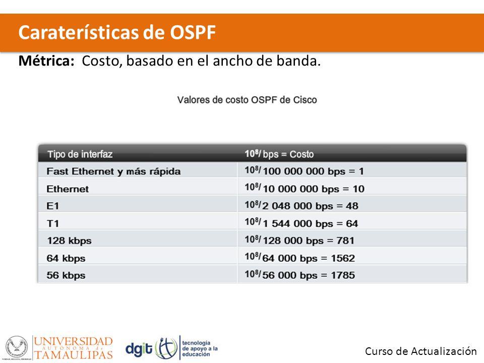Caraterísticas de OSPF Curso de Actualización Métrica: Costo, basado en el ancho de banda.
