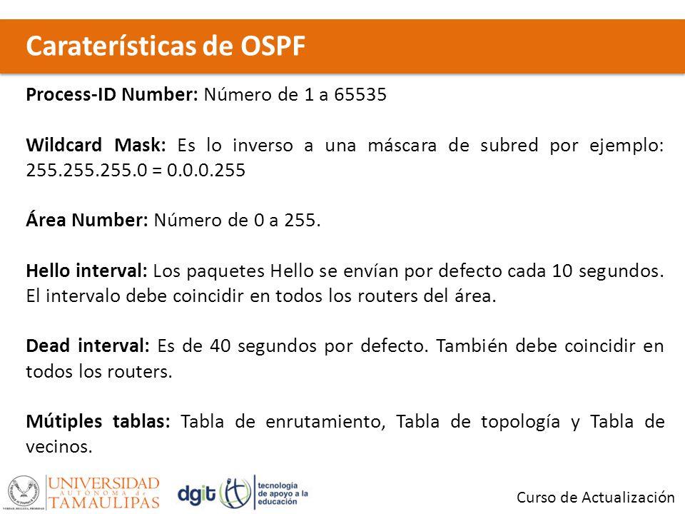 Caraterísticas de OSPF Curso de Actualización Process-ID Number: Número de 1 a 65535 Wildcard Mask: Es lo inverso a una máscara de subred por ejemplo: 255.255.255.0 = 0.0.0.255 Área Number: Número de 0 a 255.