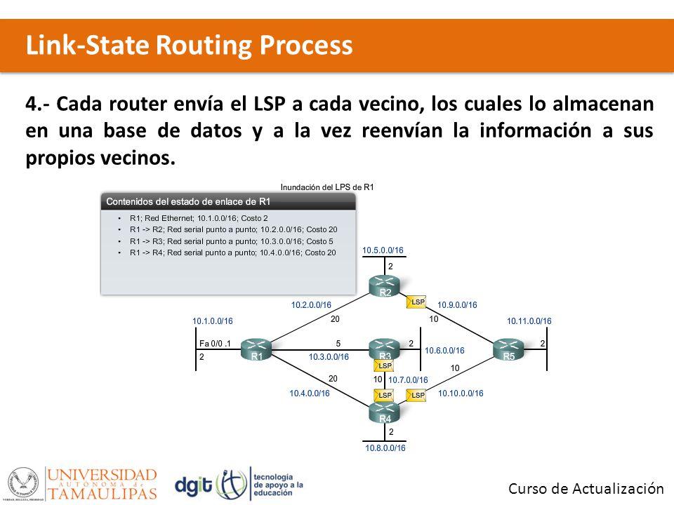 Link-State Routing Process Curso de Actualización 4.- Cada router envía el LSP a cada vecino, los cuales lo almacenan en una base de datos y a la vez reenvían la información a sus propios vecinos.
