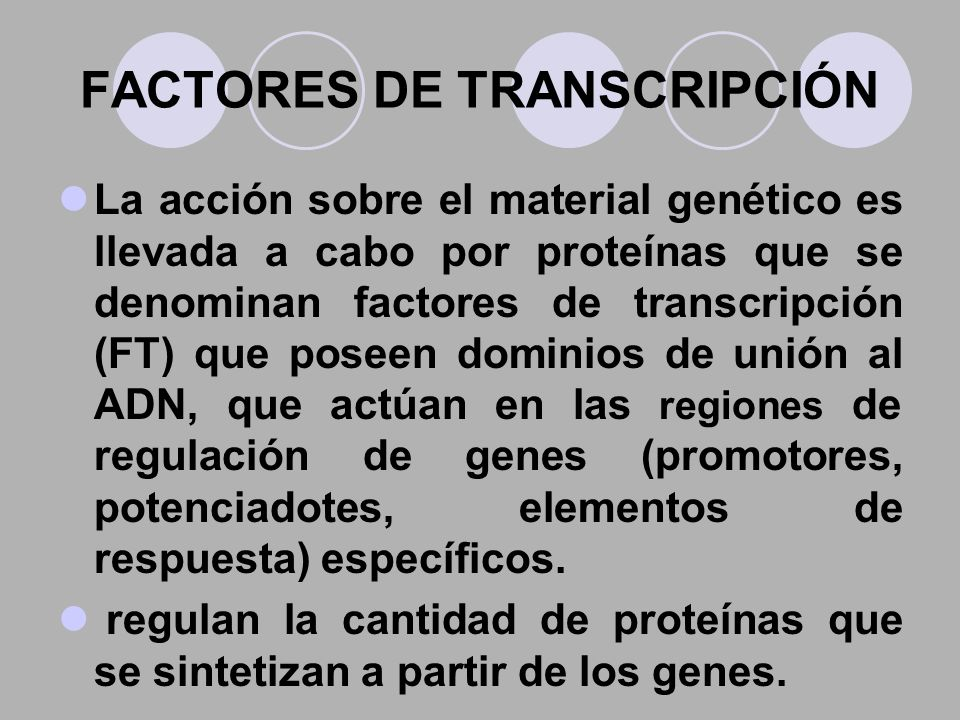 FACTORES DE TRANSCRIPCIÓN La acción sobre el material genético es llevada a cabo por proteínas que se denominan factores de transcripción (FT) que pos