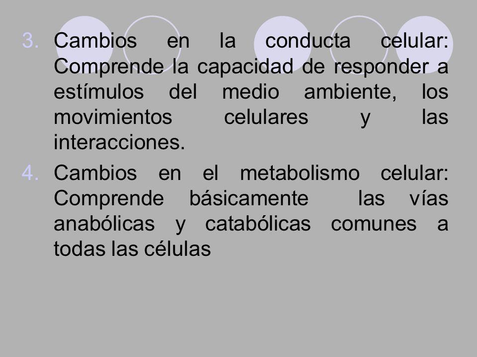 3.Cambios en la conducta celular: Comprende la capacidad de responder a estímulos del medio ambiente, los movimientos celulares y las interacciones. 4