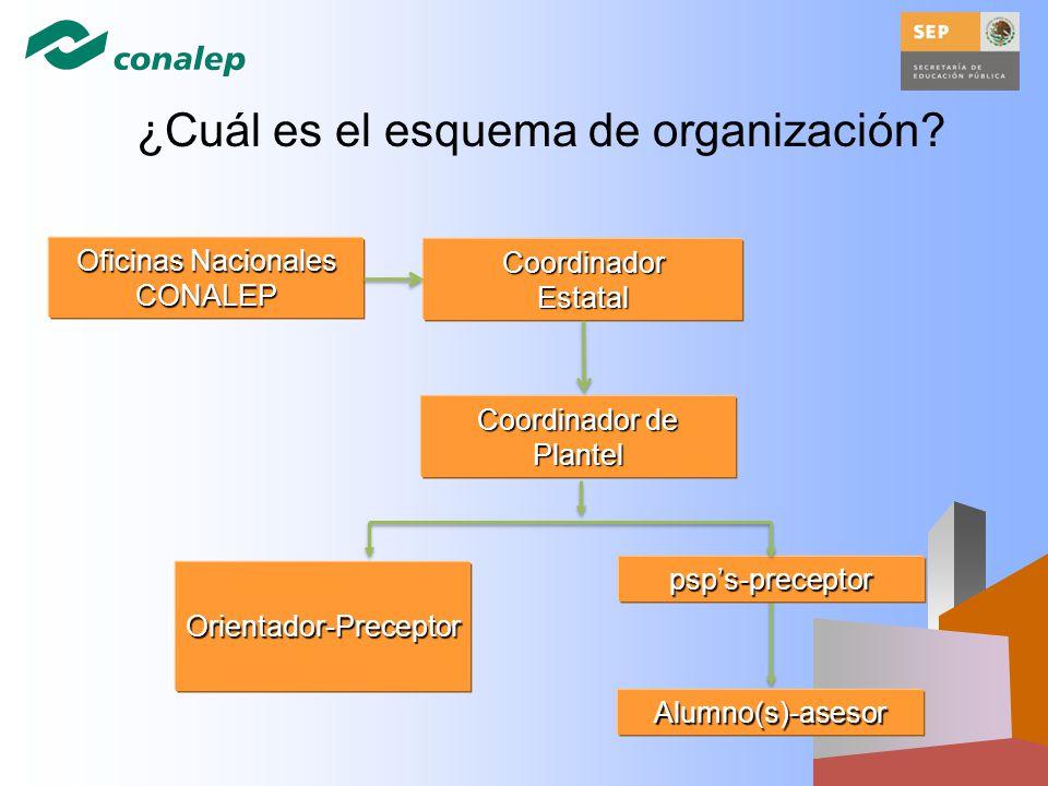 CoordinadorEstatal Coordinador de Plantel Orientador-Preceptor psps-preceptor Alumno(s)-asesor Oficinas Nacionales CONALEP ¿Cuál es el esquema de orga