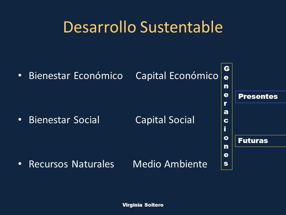 M.V.S.O. Virginia Soltero Desarrollo Sustentable Bienestar Económico Capital Económico Bienestar Social Capital Social Recursos Naturales Medio Ambien
