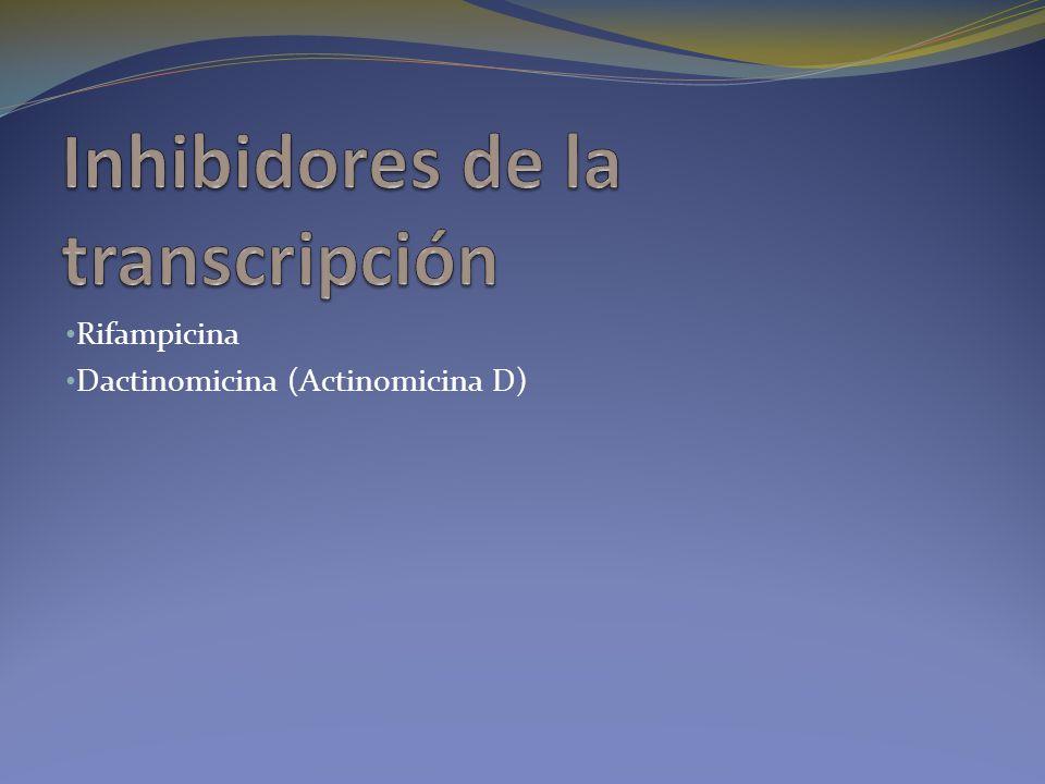 Rifampicina Dactinomicina (Actinomicina D)