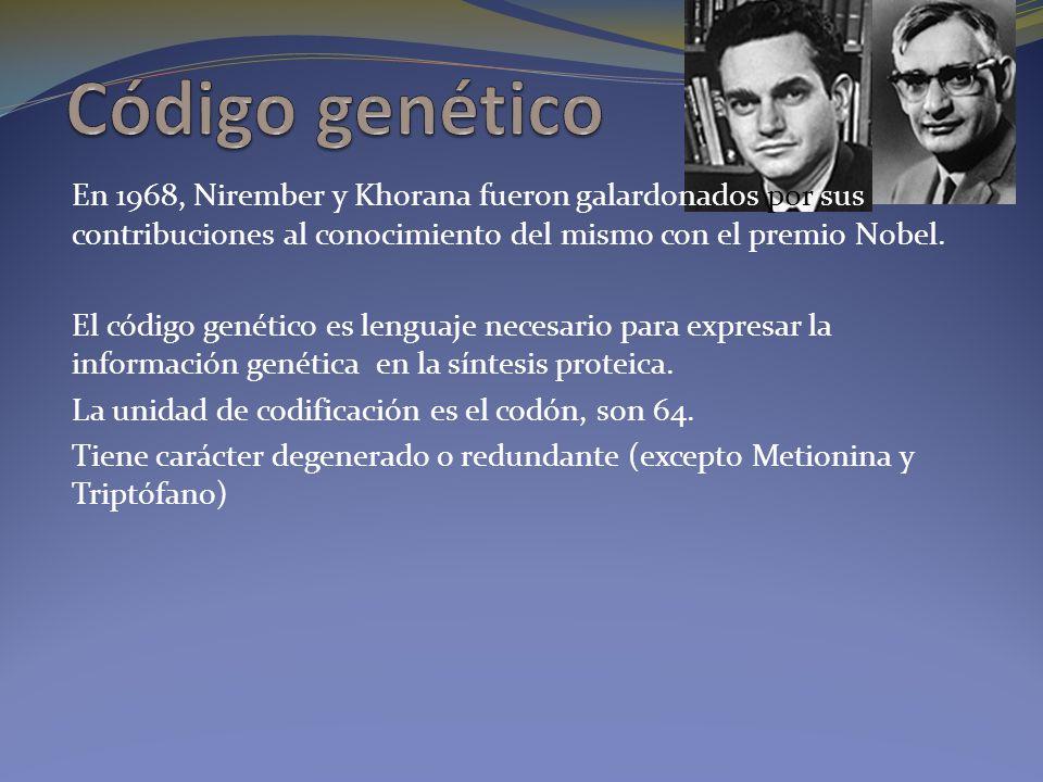 En 1968, Nirember y Khorana fueron galardonados por sus contribuciones al conocimiento del mismo con el premio Nobel. El código genético es lenguaje n