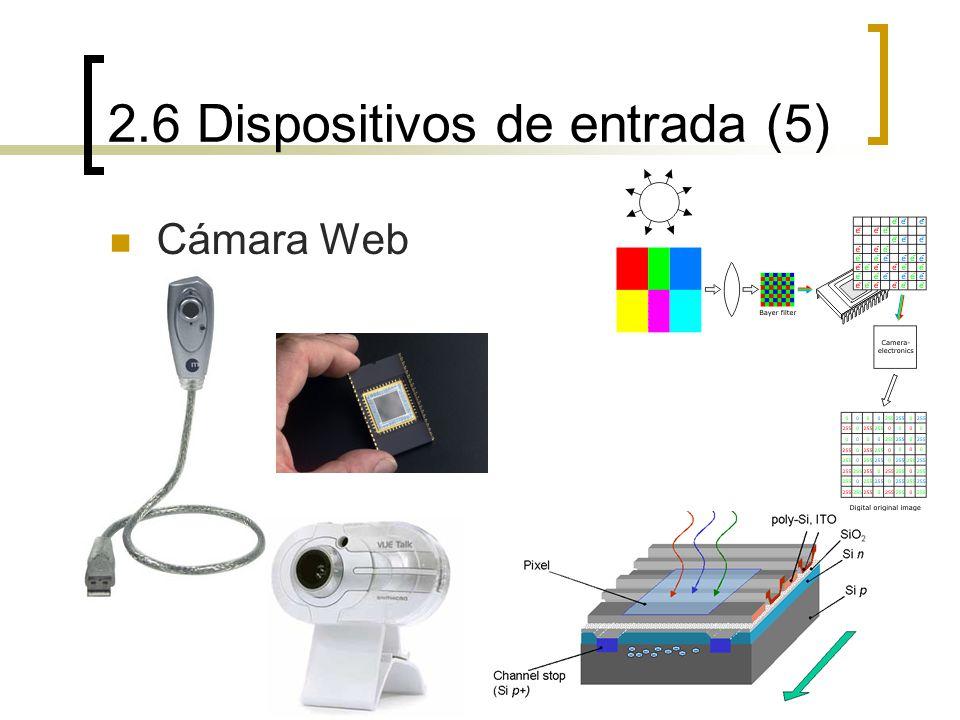 2.6 Dispositivos de entrada (5) Cámara Web