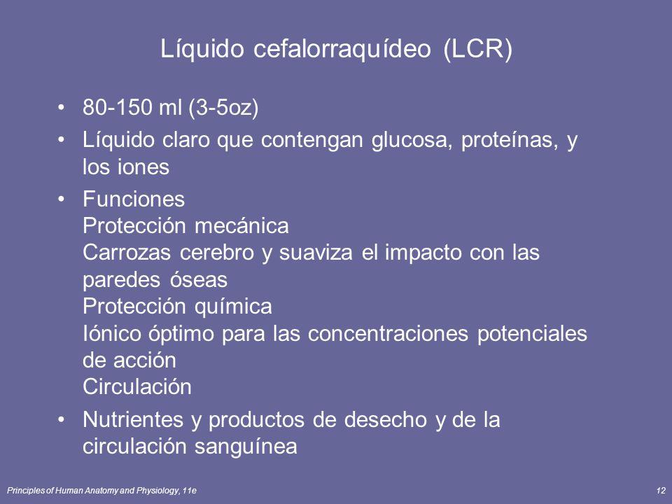 Principles of Human Anatomy and Physiology, 11e12 Líquido cefalorraquídeo (LCR) 80-150 ml (3-5oz) Líquido claro que contengan glucosa, proteínas, y lo
