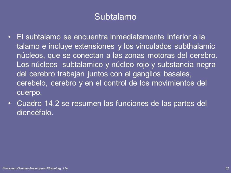 Principles of Human Anatomy and Physiology, 11e52 Subtalamo El subtalamo se encuentra inmediatamente inferior a la talamo e incluye extensiones y los
