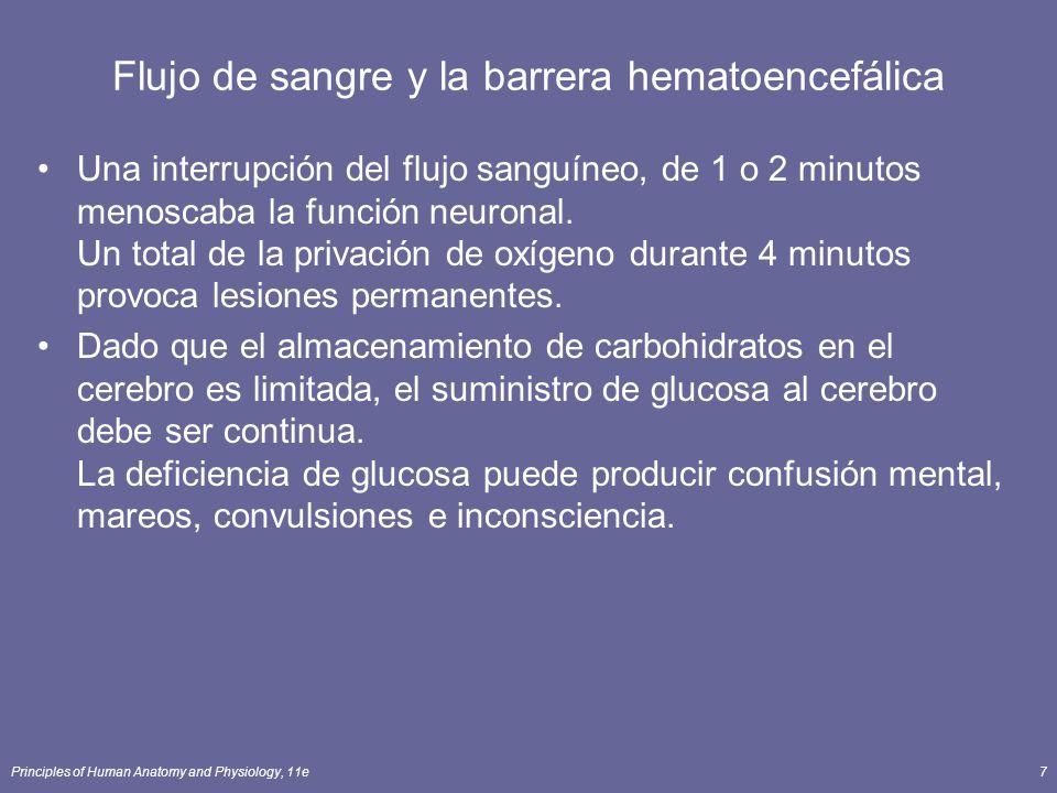 Principles of Human Anatomy and Physiology, 11e7 Flujo de sangre y la barrera hematoencefálica Una interrupción del flujo sanguíneo, de 1 o 2 minutos