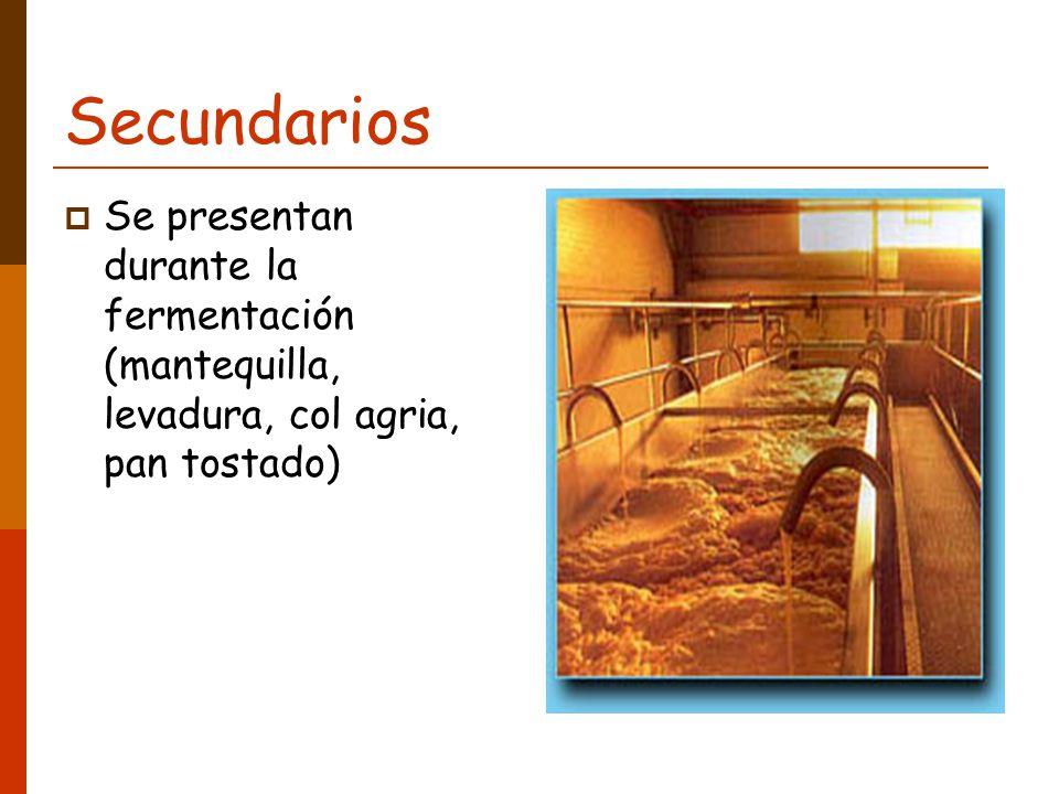 Secundarios Se presentan durante la fermentación (mantequilla, levadura, col agria, pan tostado)