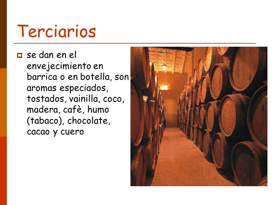 Terciarios se dan en el envejecimiento en barrica o en botella, son aromas especiados, tostados, vainilla, coco, madera, cafè, humo (tabaco), chocolate, cacao y cuero