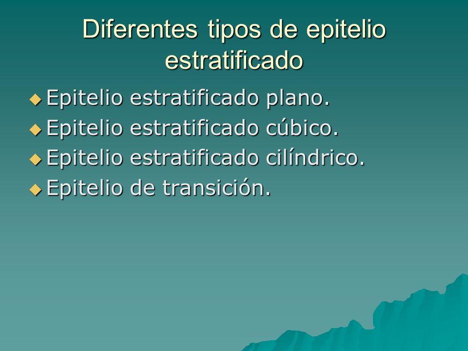 Diferentes tipos de epitelio estratificado Epitelio estratificado plano. Epitelio estratificado plano. Epitelio estratificado cúbico. Epitelio estrati