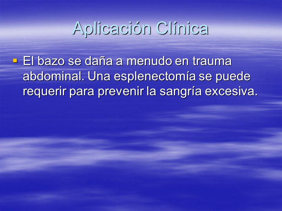 Aplicación Clínica El bazo se daña a menudo en trauma abdominal. Una esplenectomía se puede requerir para prevenir la sangría excesiva. El bazo se dañ