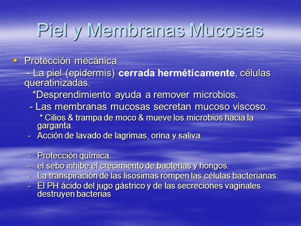 Piel y Membranas Mucosas Protección mecánica Protección mecánica - La piel (epidermis), células queratinizadas. - La piel (epidermis) cerrada hermétic