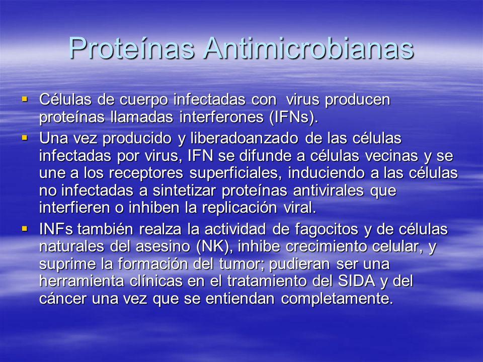 Proteínas Antimicrobianas Células de cuerpo infectadas con virus producen proteínas llamadas interferones (IFNs). Células de cuerpo infectadas con vir