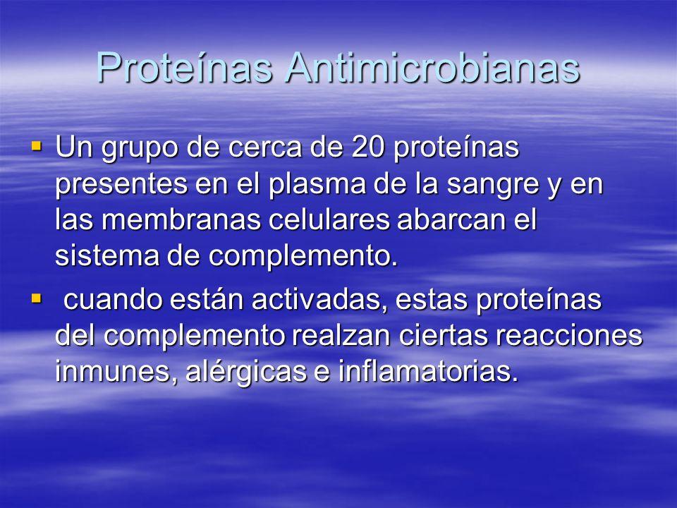 Proteínas Antimicrobianas Un grupo de cerca de 20 proteínas presentes en el plasma de la sangre y en las membranas celulares abarcan el sistema de com