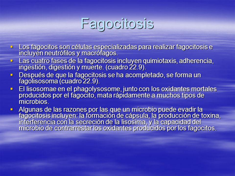 Fagocitosis Quimiotáxis Quimiotáxis Atracción de químicos de tejidos dañados, proteínas del complemento o productos microbianos.