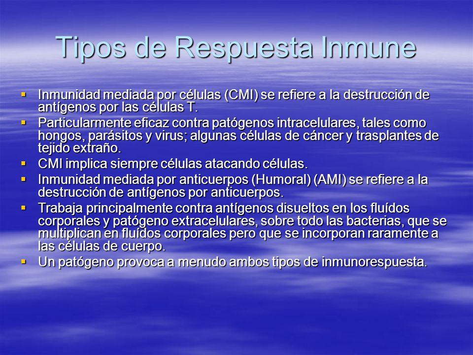 Tipos de Respuesta Inmune Inmunidad mediada por células (CMI) se refiere a la destrucción de antígenos por las células T. Inmunidad mediada por célula